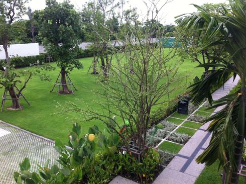 THE PLANT แจ้งวัฒนะ บ้าน ห้องนอนใหญ่ วิวระเบียง