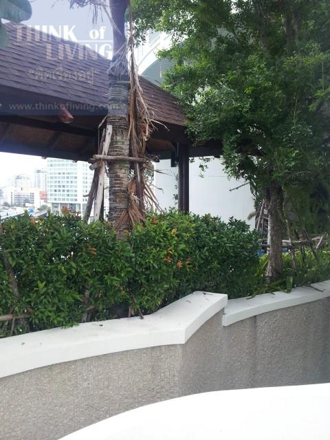 Le Luk & Sky Walk Condominium (12)